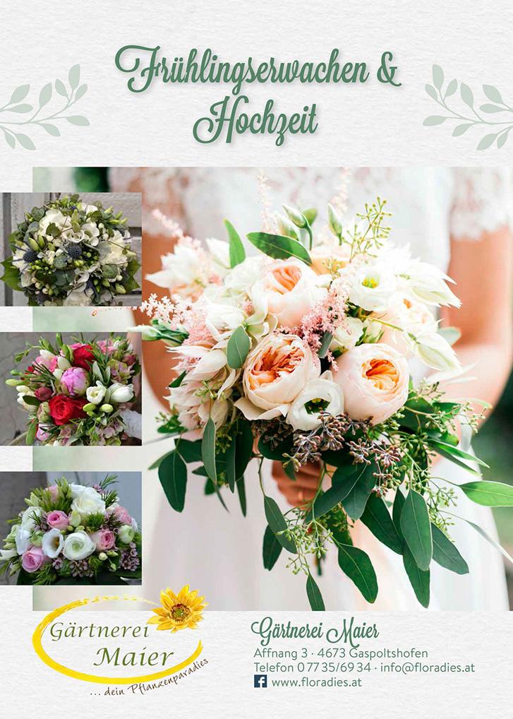 Frühlingserwachen & Hochzeit